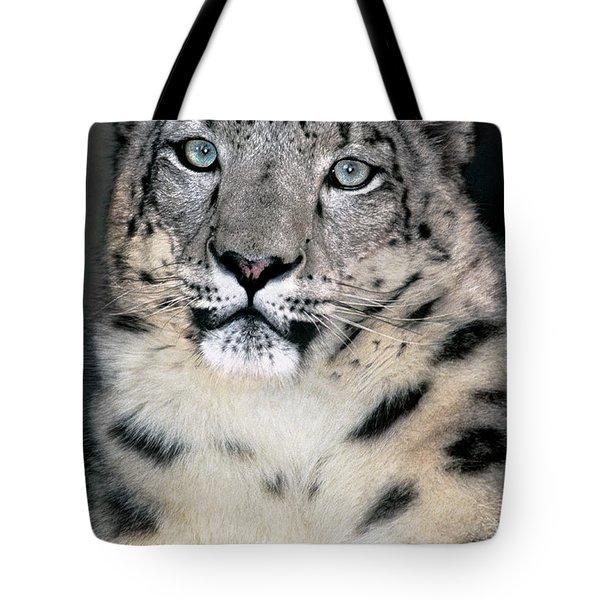 Snow Leopard Portrait Endangered Species Wildlife Rescue Tote Bag