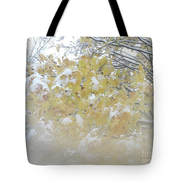 Tote Bag featuring the photograph Snowy Maple by PJ Boylan
