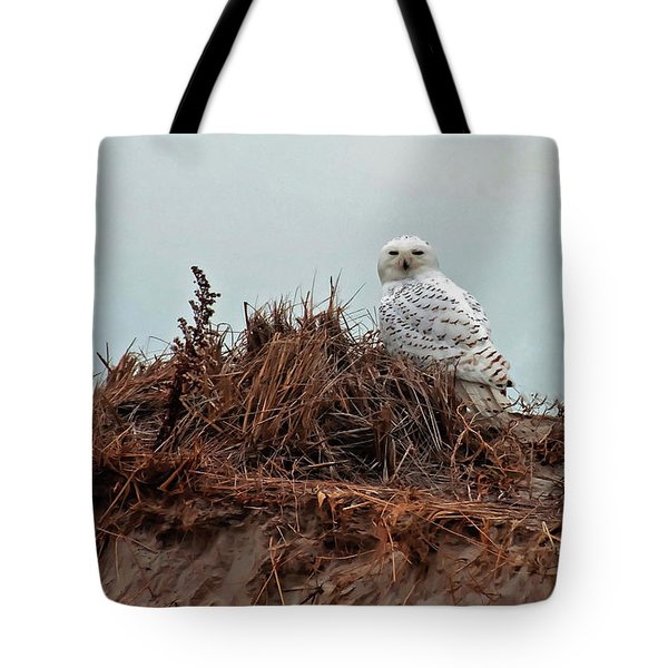 Tote Bag featuring the photograph Snowy Owl In The Dunes by Wayne Marshall Chase