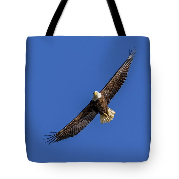 Tote Bag featuring the photograph Soaring Eagle by Lori Coleman