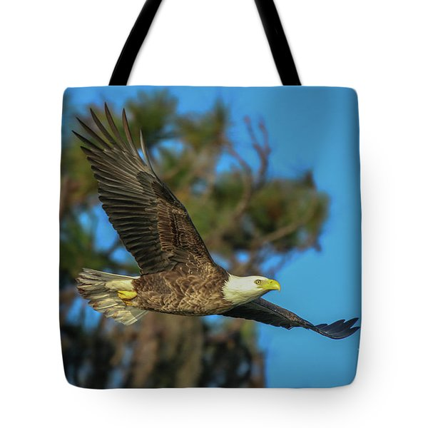 Tote Bag featuring the photograph Soaring Eagle by Tom Claud