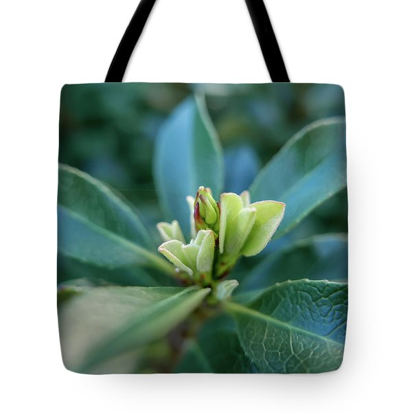 Softly Blooming Tote Bag