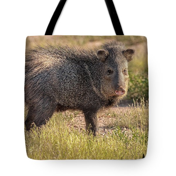 Solo Javelina Tote Bag