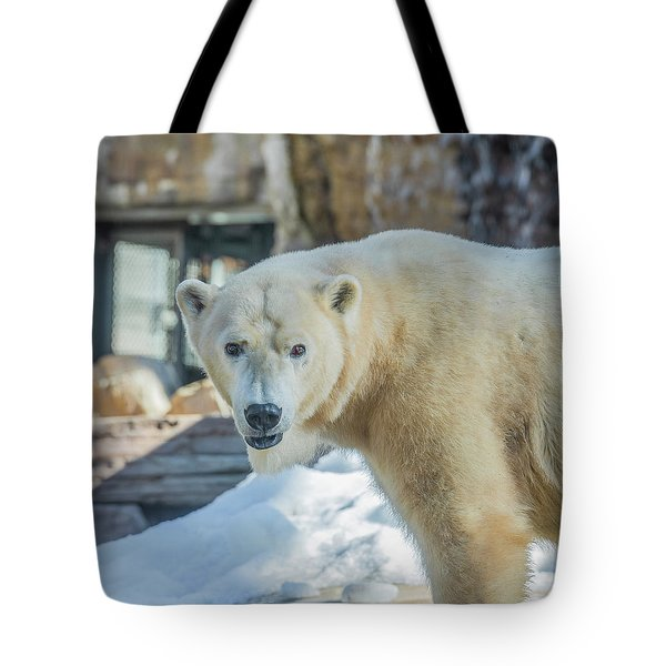 Someone's Hangry Tote Bag