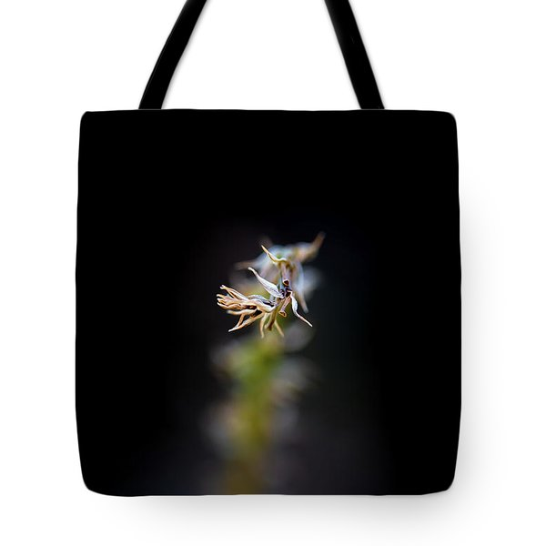 Somewhere In The Garden Tote Bag