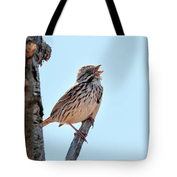 Song Sparrow Singing Tote Bag