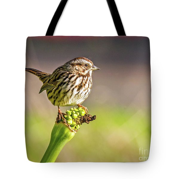 Songster Perching Tote Bag
