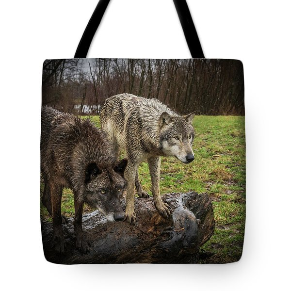 Sort Of Twins Tote Bag