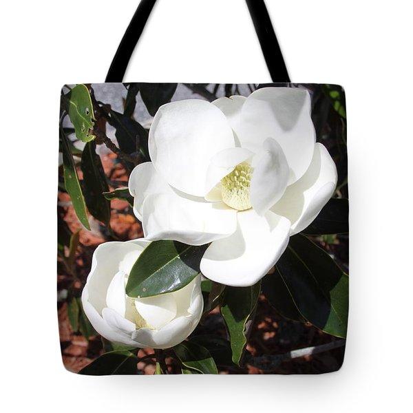 Sosouthern Magnolia Blossoms Tote Bag