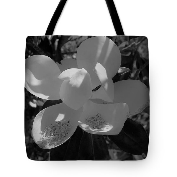 Southern Magnolia In Black And White Tote Bag