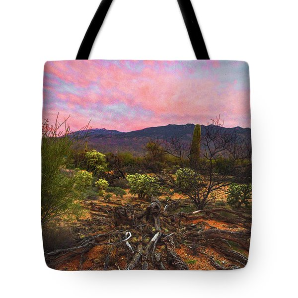 Southwest Day's End Tote Bag