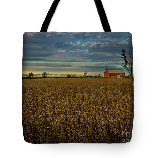 Soybean Sunset Tote Bag