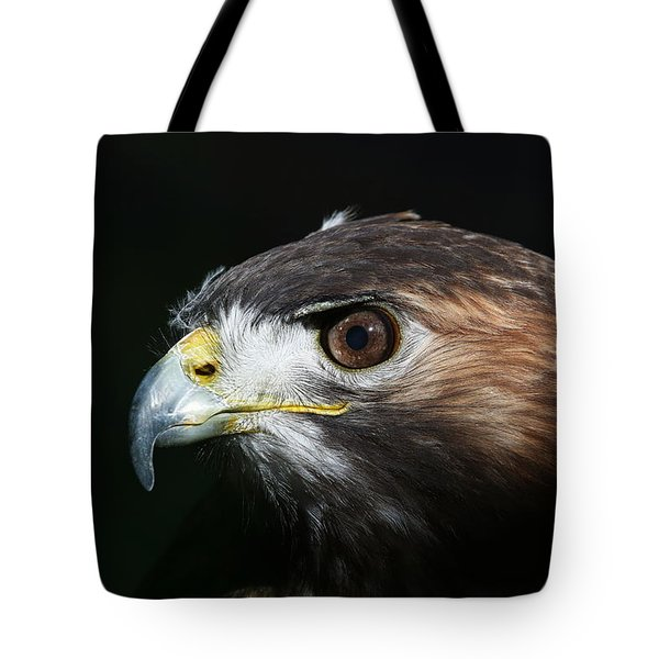Tote Bag featuring the photograph Sparkle In The Eye - Red-tailed Hawk by Debi Dalio