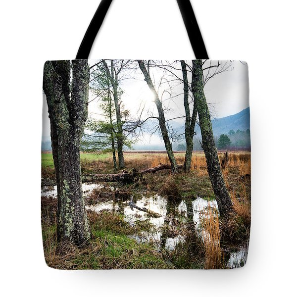 Tote Bag featuring the photograph Sparks Lane Sunrise by Michael D Miller
