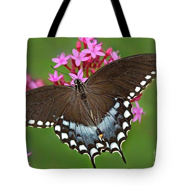 Spicebush Swallowtail Papilio Trollus Tote Bag