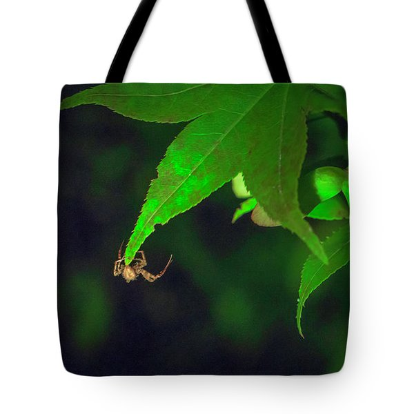 Spider At Night On A Leaf Tote Bag