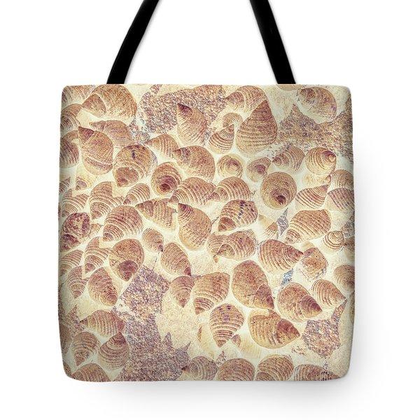 Spiral Seaside Tote Bag