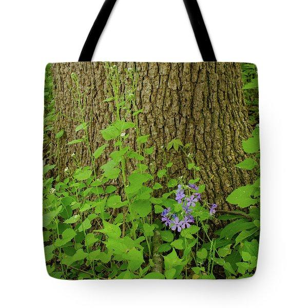 Splash Of Purple Tote Bag