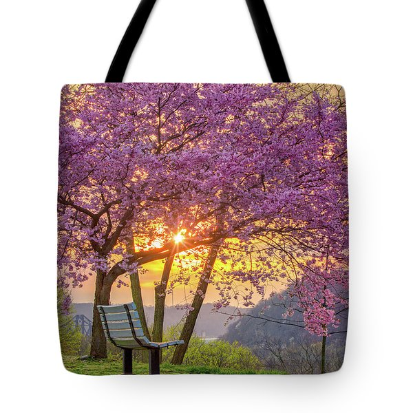 Spring Bench In Beaver 2 Tote Bag