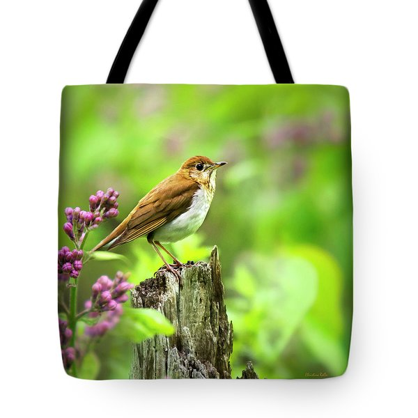 Spring Bird Veery Square Tote Bag