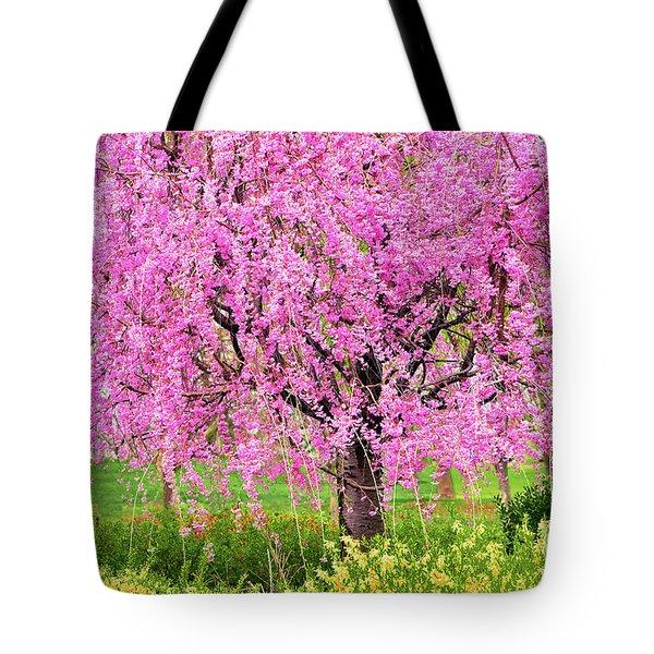 Spring Burst Of Color Tote Bag