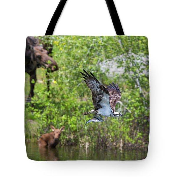 Spring Deliveries  Tote Bag