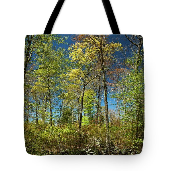 Spring Forest Tote Bag