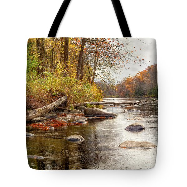 Spring Hole #2 Tote Bag