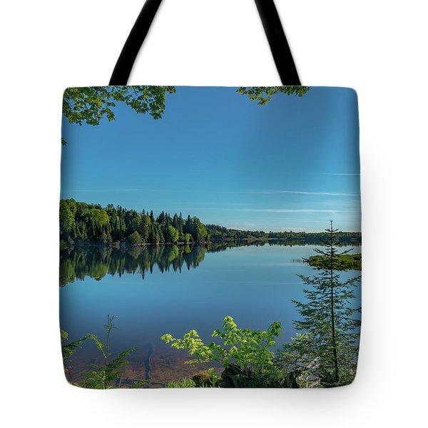 Spring Morning On Grand Sable Lake Tote Bag