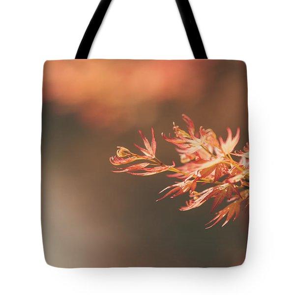 Spring Or Fall Tote Bag