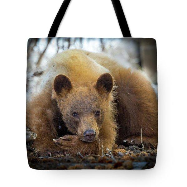 Spring Slumber  Tote Bag