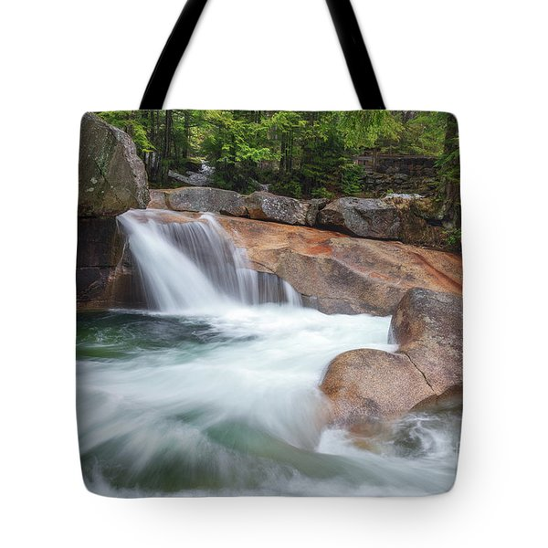 Tote Bag featuring the photograph Springtime At The Basin by Sharon Seaward