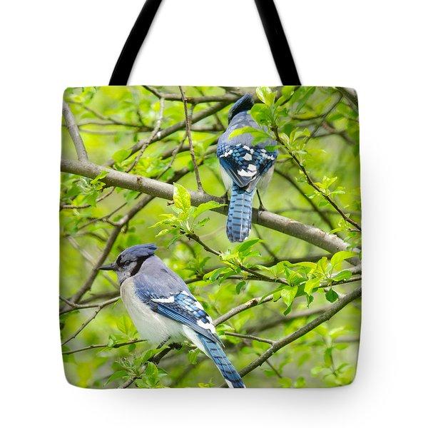 Springtime Pairs Tote Bag