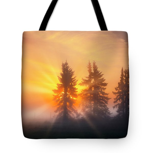 Spruce Trees In The Morning Tote Bag