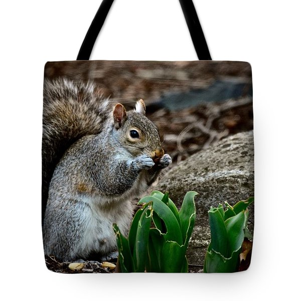 Squirrel And His Dinner Tote Bag