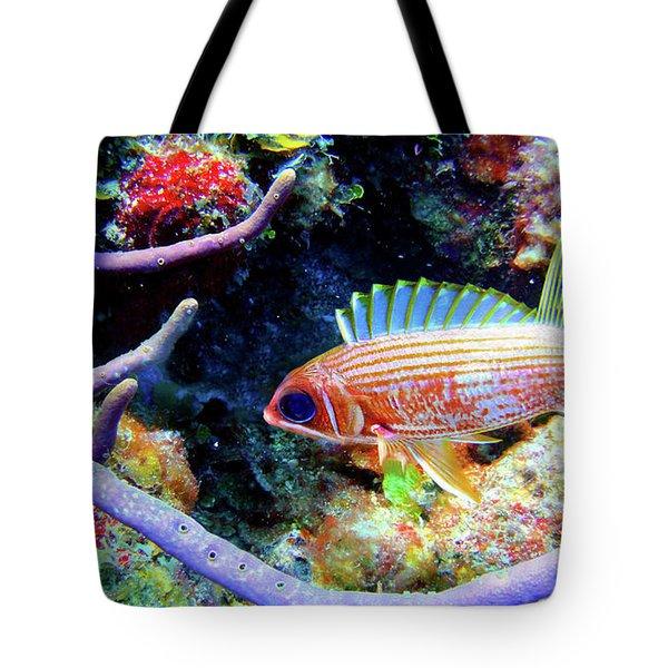 Squirrel Fish Tote Bag