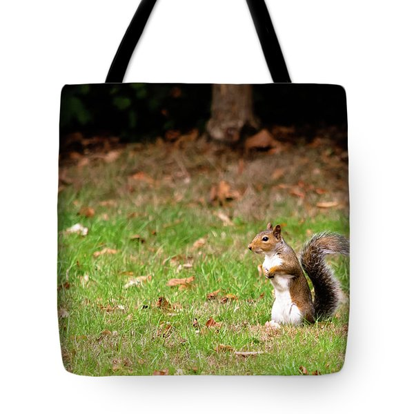 Tote Bag featuring the photograph Squirrel Stood Up In Grass by Scott Lyons