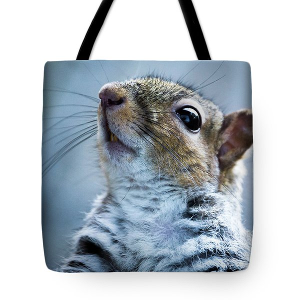 Squirrel With Nose In The Air Tote Bag