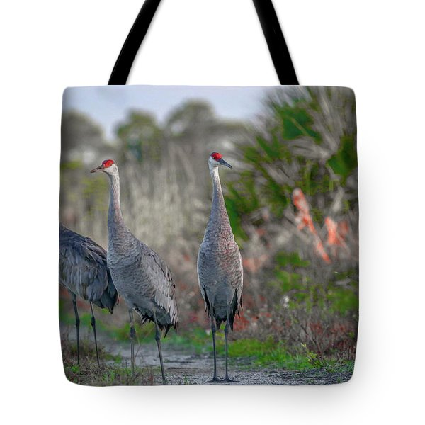 Tote Bag featuring the photograph Standing Sandhills by Tom Claud