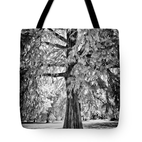 Standing Tall Old Tree - I R Tote Bag