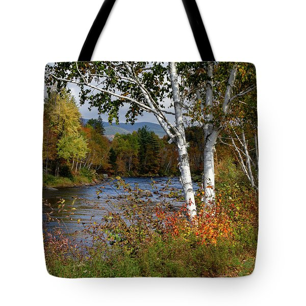 Tote Bag featuring the photograph Stark, Nh Fall White Birch  by Betty Pauwels
