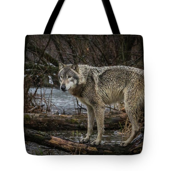 Stay Dry Tote Bag