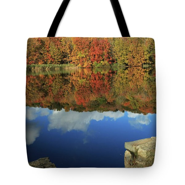 Stepping Into Autumn Tote Bag