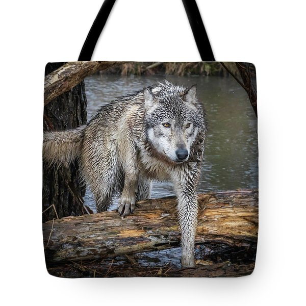 Stepping Over Tote Bag