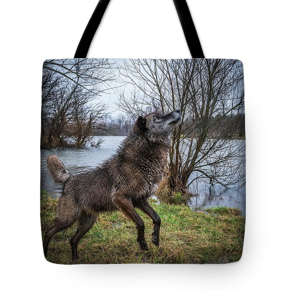 Stick Get It Tote Bag