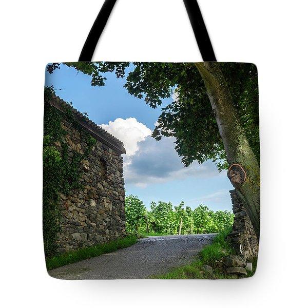 Stone House II Tote Bag
