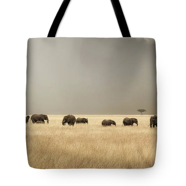 Stormy Skies Over The Masai Mara With Elephants And Zebras Tote Bag