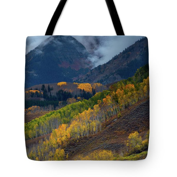 Tote Bag featuring the photograph Stormy Weather Over The Elks by John De Bord