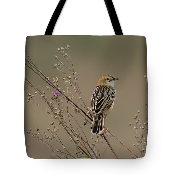 Tote Bag featuring the photograph Stout Cisticola by Thomas Kallmeyer