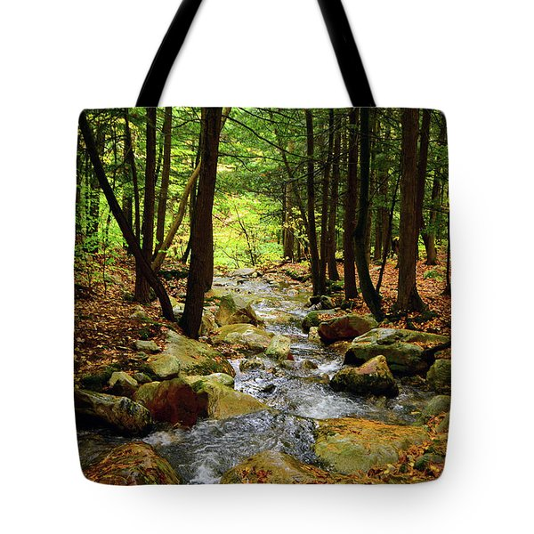 Tote Bag featuring the photograph Stream Rages Horizontal Format by Raymond Salani III